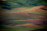 Multi-colored hills of the Palouse