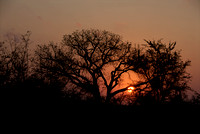 Sunset in Kruger NP