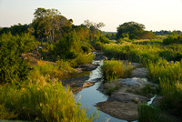 Sabie River at sunset